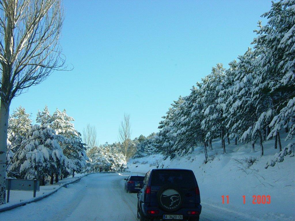 Carretera Sierra Nevada entre pinos